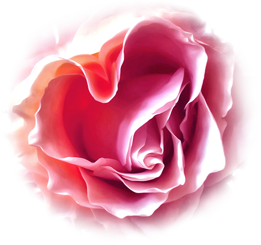 heart_rose_slider